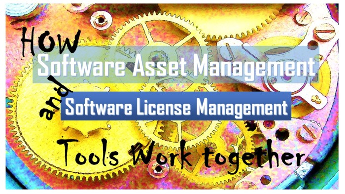 How_Software_Asset_Management_and_License_Management_Tools_ work_ together